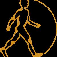 Seifert Logo Bg Jaune